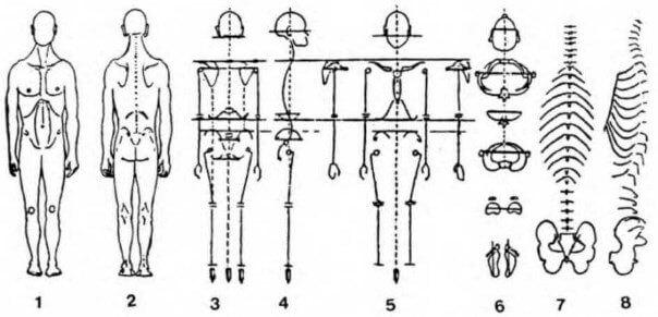 Вертеброгенний руховий стереотип (ВДС)