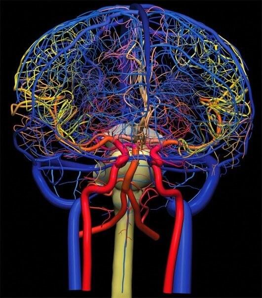Как найти причину головокружения, головной боли? Как лечить сосуды мозга?