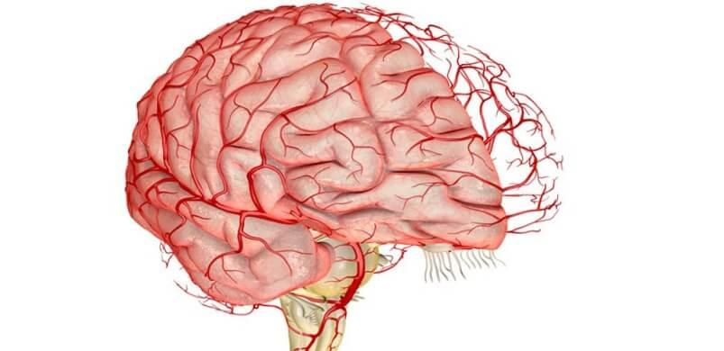 Улучшить кровоток в сосудах головного мозга при головной боли, головокружении, боли в затылке, шуме в ушах.