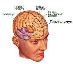 Вегетативно-сосудистая дистония